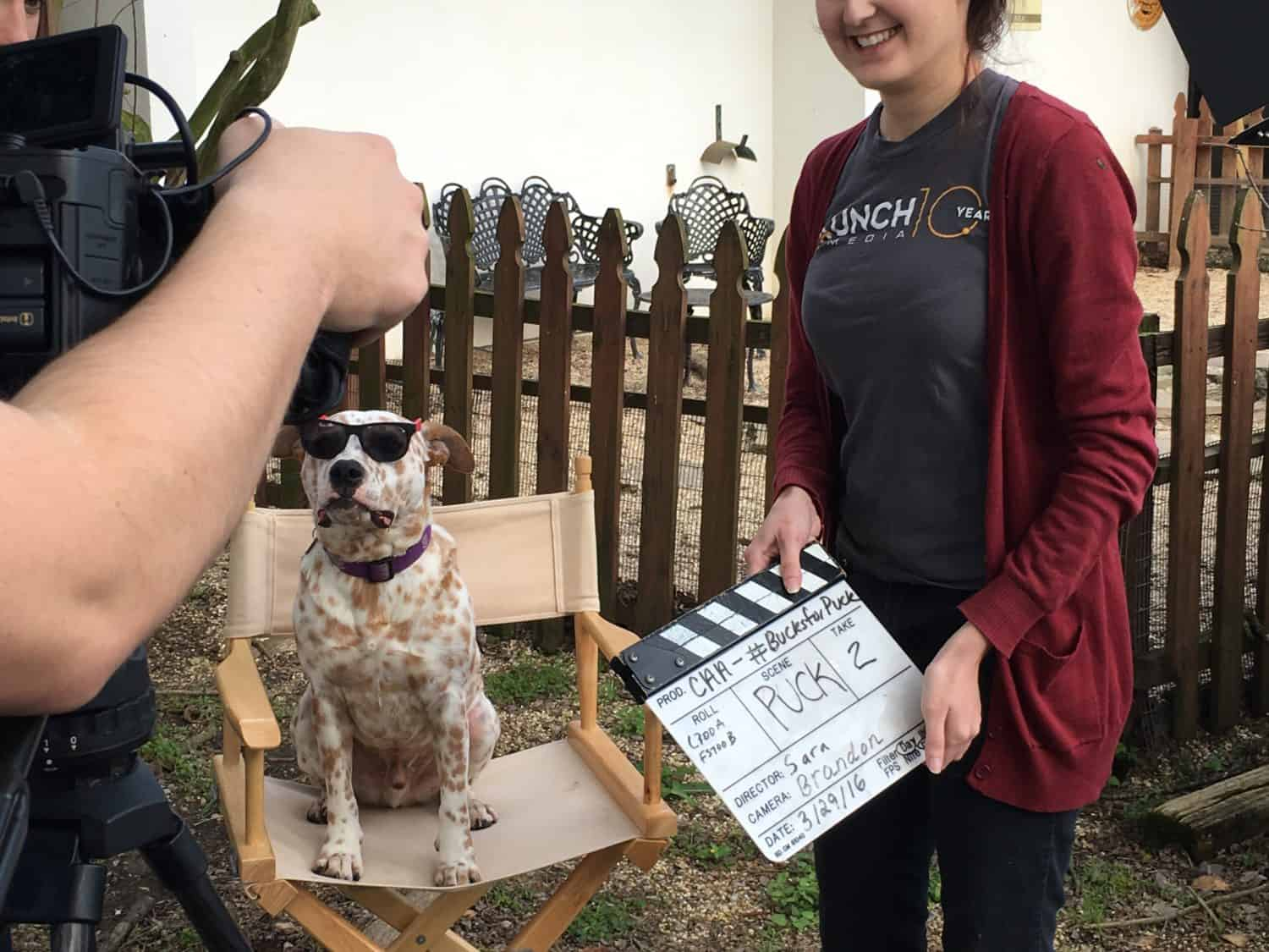 A camera woman prepares for take 2 of a spotted dog for a Cane's commericial